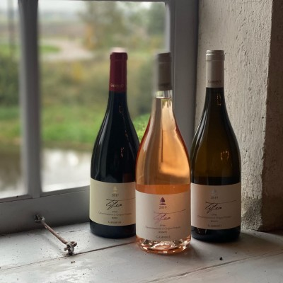 Thumbnail Full vintage selection top wine tasting at Gambino Winery