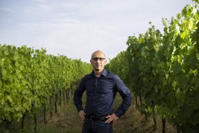 Thumbnail Tasting tour at La Viola winery
