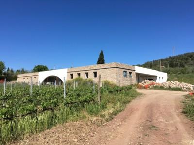 Thumbnail Organic tour experience at Tenuta Casadei