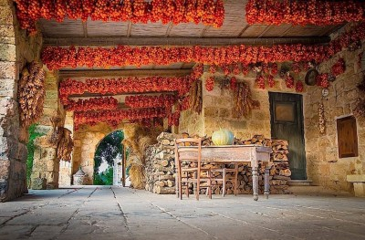 Thumbnail Discover the apulian food and wine heritage at Masseria Le Stanzìe