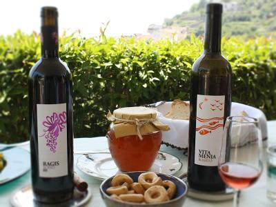 Thumbnail Wine tasting in a boutique organic vineyard on the Amalfi Coast