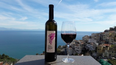 Thumbnail Wine tour, tasting and lunch or dinner at Vigne di Raito