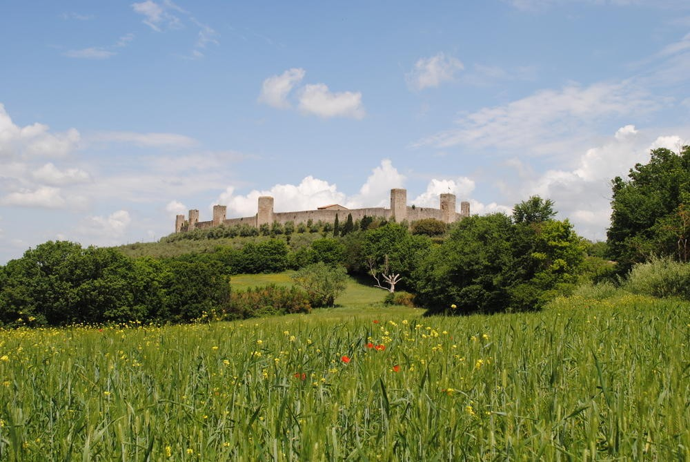 Day Tours in Tuscany