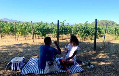 Thumbnail Pic-nic immersed in the vineyards