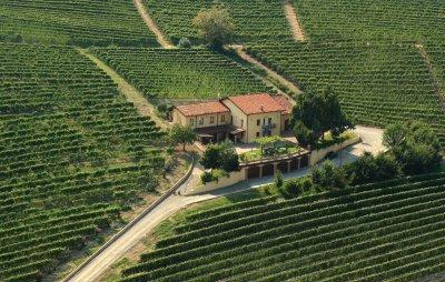 Main image of Azienda Agricola Cagliero S.S.