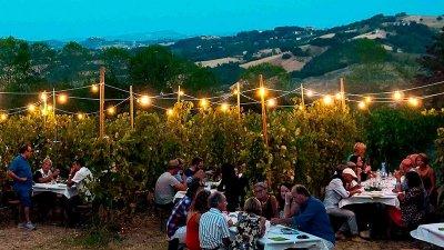 Main image of Cantina Terre Di San Ginesio