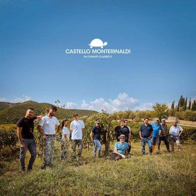 Main image of Castello Monterinaldi