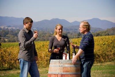 Main image of Pizzini Wines